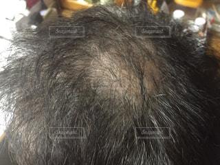 頭髪の写真・画像素材[1863240]
