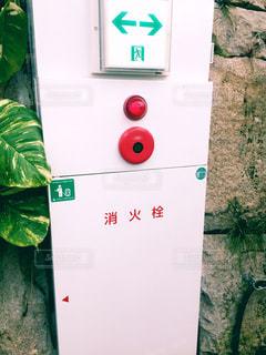 消火栓の写真・画像素材[1881954]