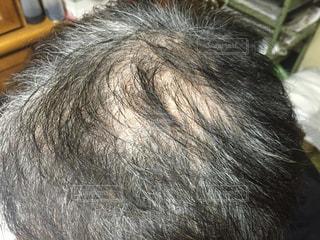 頭髪の写真・画像素材[2032483]