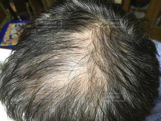 髪の毛の写真・画像素材[2248538]
