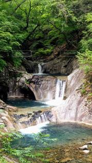 西沢渓谷の写真・画像素材[1811854]