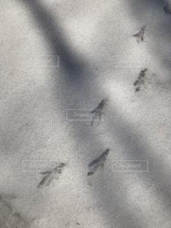 雪についた足あとの写真・画像素材[2046182]