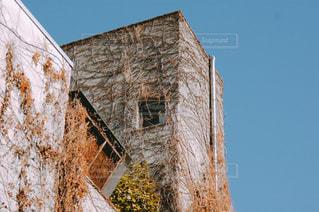 ツタの絡まるビルの写真・画像素材[1775223]