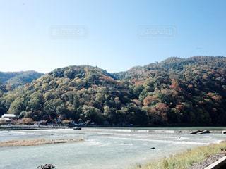 京都嵐山の写真・画像素材[1776656]