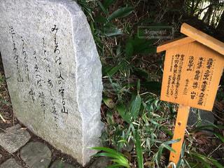 神山の春の写真・画像素材[1819956]