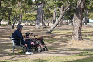 公園のベンチに座っている人の写真・画像素材[1821982]