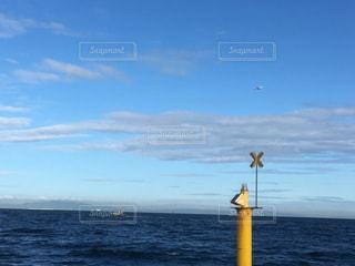 飛行機飛んでる〜の写真・画像素材[2011652]