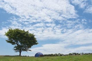 草原の写真・画像素材[2208393]