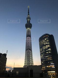 東京スカイツリーの写真・画像素材[1788144]