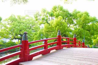 赤い橋の写真・画像素材[1794663]
