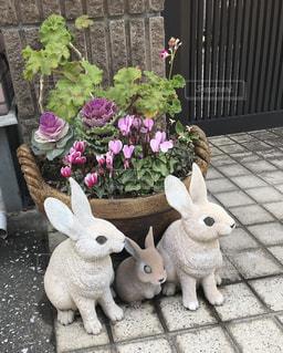 門の前にいる置物のウサギの写真・画像素材[1782624]