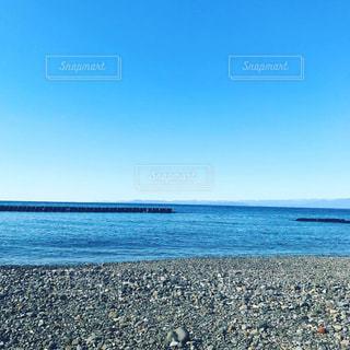 海の横にある砂浜の上を飛んでいる鳥の写真・画像素材[1781685]