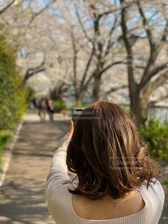 自分撮りをする女性の写真・画像素材[3073986]