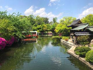 木々 に囲まれた池と船の写真・画像素材[2084924]