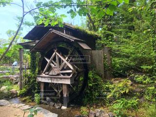森の水車小屋の写真・画像素材[2086708]