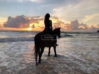 タイのプーケットで夕日見ながら乗馬の写真・画像素材[1780727]