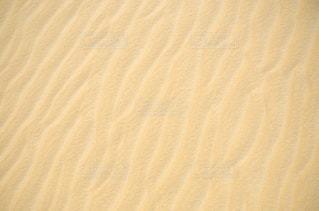 エジプトの砂漠の写真・画像素材[1785663]