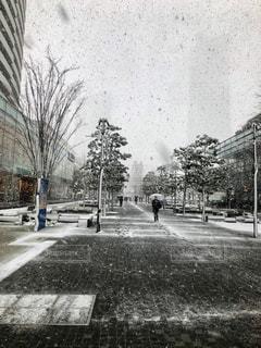 雪の覆われた道路の上を歩く人々 のグループの写真・画像素材[1791239]