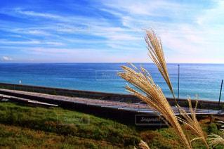 秋の空と海の写真・画像素材[1791371]