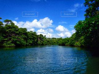 沖縄の風景の写真・画像素材[1793352]