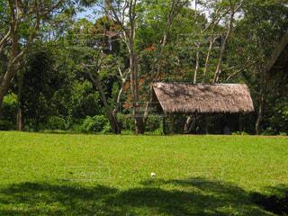 パプアニューギニアの風景の写真・画像素材[2162793]