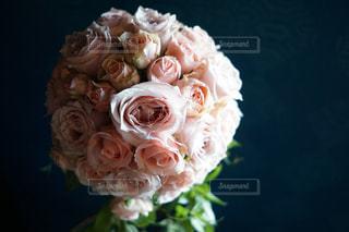近くの花のアップの写真・画像素材[1785170]