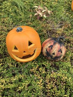 かぼちゃおばけ。の写真・画像素材[1800265]