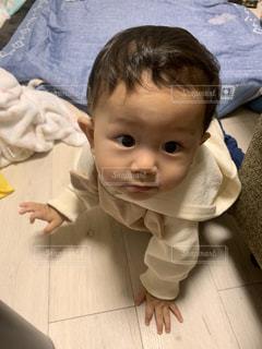 ハイハイする赤ちゃんの写真・画像素材[2510083]