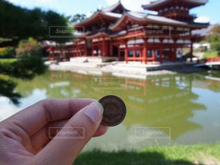 10円玉の写真・画像素材[2632015]