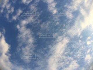 青空 好きの写真・画像素材[1797281]