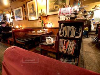 猫のいるアンティークな喫茶店の写真・画像素材[2639073]