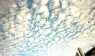うろこ雲の写真・画像素材[1847609]