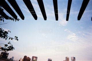 公園から見上げた空の写真・画像素材[1872792]
