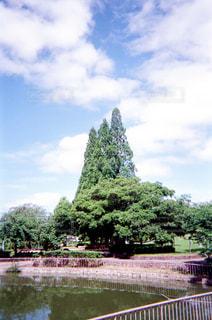 空の写真・画像素材[1994655]