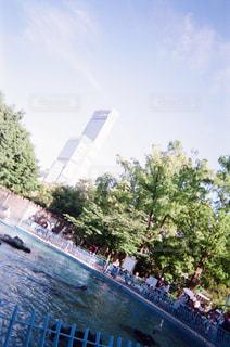 ビルの写真・画像素材[1994771]