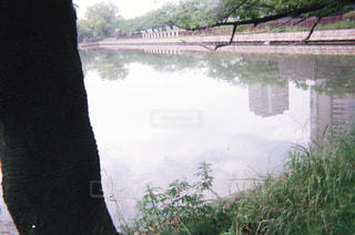 水面の写真・画像素材[1994791]