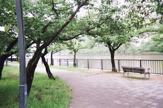 川の写真・画像素材[1994792]