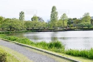 茨城県水戸市 千波湖の写真・画像素材[2724301]