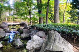 岩に囲まれた庭園の池の写真・画像素材[3650854]