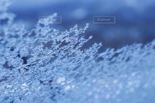 窓についた雪の写真・画像素材[1868039]