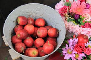 りんごの写真・画像素材[1862112]