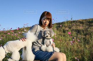 犬と女性の写真・画像素材[2445583]