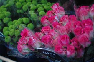 パリの花屋の写真・画像素材[1800645]