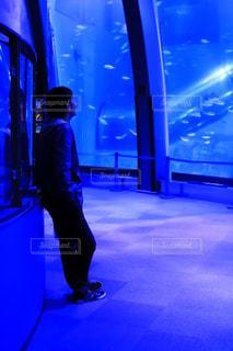 八景島シーパラダイス水族館に佇む男性の写真・画像素材[1809426]
