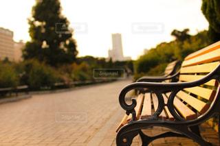 夕暮れの山下公園のベンチの写真・画像素材[1858773]