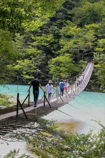 静岡県夢の吊り橋を渡る人々の写真・画像素材[1858784]