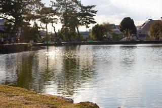 猿沢池の写真・画像素材[2021106]