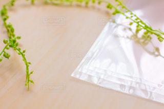 透明な袋の写真・画像素材[2142781]