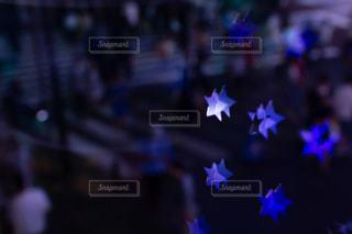 夜の池袋の横断歩道の写真・画像素材[2277402]