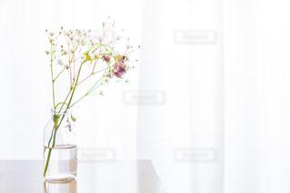 テーブルの上に花瓶とかすみ草の写真・画像素材[2953361]